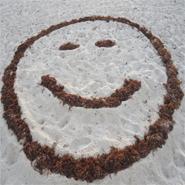 Sonríe y la Vida te Sonreirá, Ríe y Serás Feliz